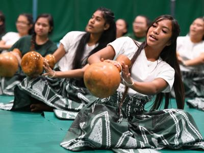 Aiea 2017 student performance